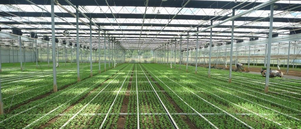 heating tube to improve greenhouse energy efficiency
