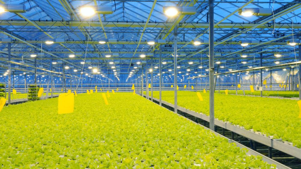 Greentech Greenhouse design software